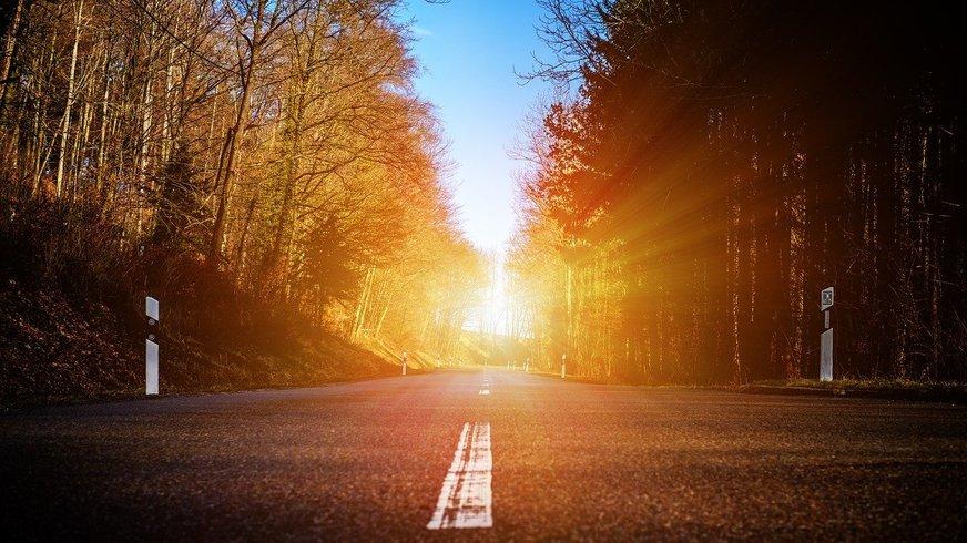 Eine Landstraße gesäumt von Wäldern. Die Perspektive geht nach vorn, in der Ferne ist ein helles Leuchten zu sehen